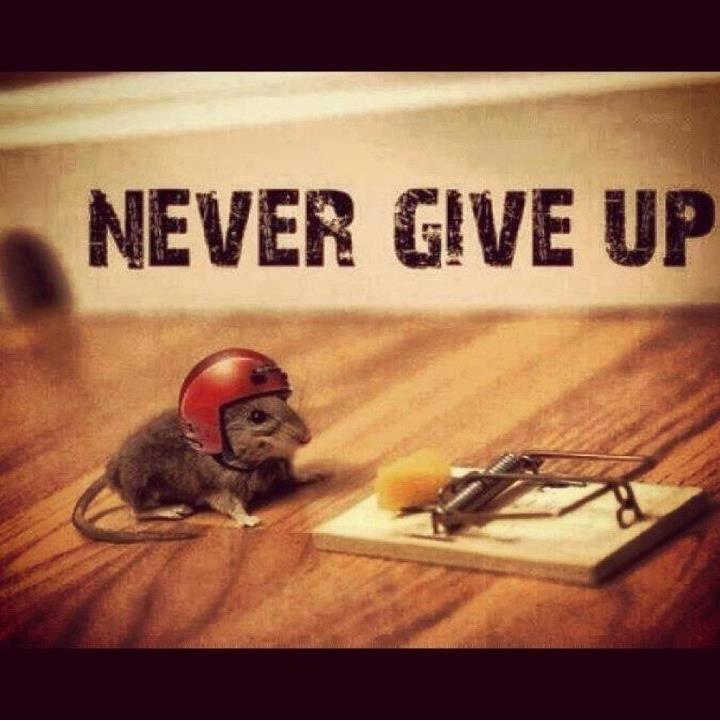 1 Don't give up
